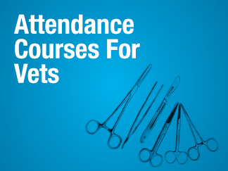 Attendance Courses For Vets